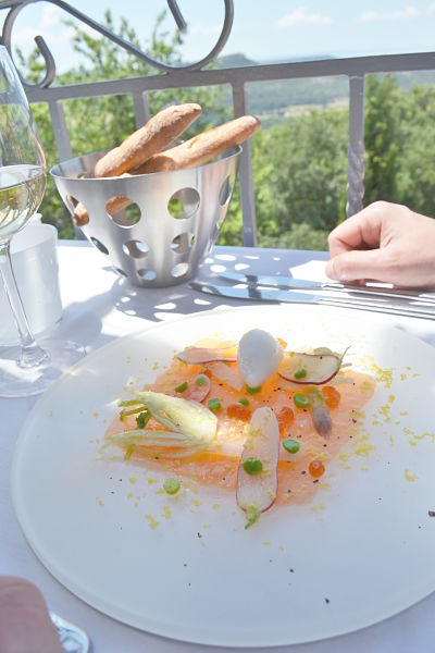 table-de-ventabren-avis-critique-terrasse-carpaccio-saumon-fenouil-sorbet-anis-printemps-2014