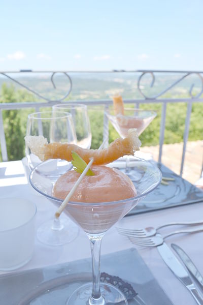 table-de-ventabren-avis-critique-terrasse-langoustine-tomate-écume-celeri-branche-printemps-2014