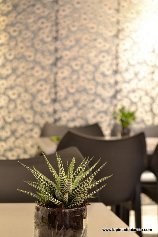 pat thai aix deco zen gris bleu plante grasse